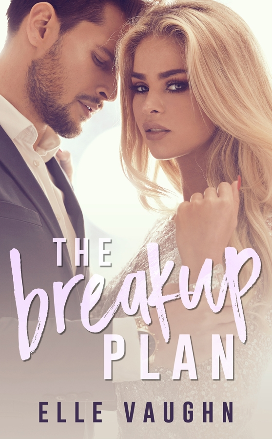 Cover image for The Breakup Plan by Elle Vaughn